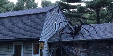 19 casas que entraram na vibe do Halloween e ficaram realmente assustadoras