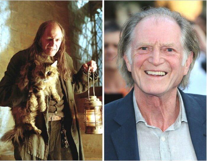 Atores Harry Potter Antes e Depois (19)