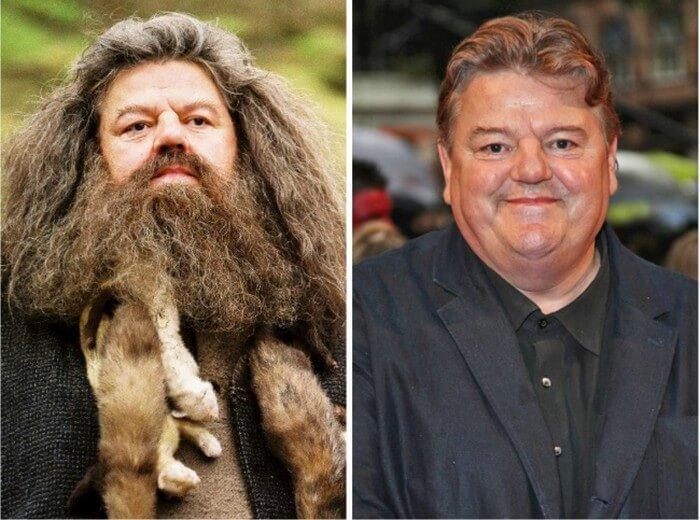 Atores Harry Potter Antes e Depois (6)