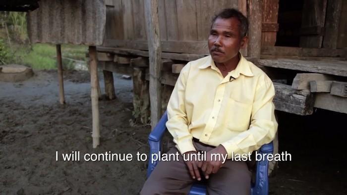 Jadav planta floresta (1)