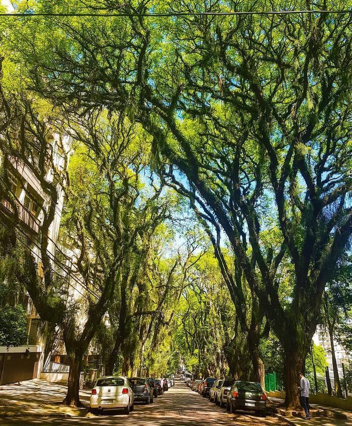 ruas bonitas morar (16)