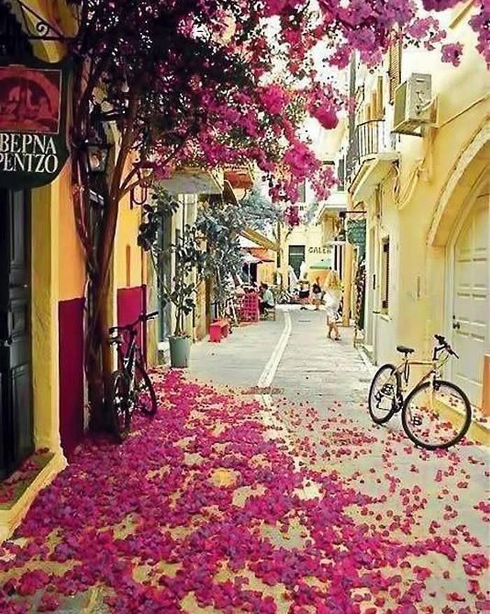 ruas bonitas morar (12)