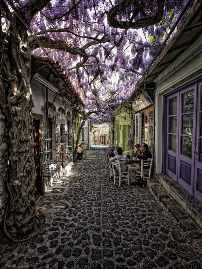 ruas bonitas morar (20)
