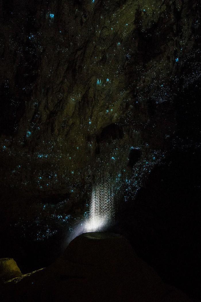 Cavernas mágicas da Nova Zelândia (2)