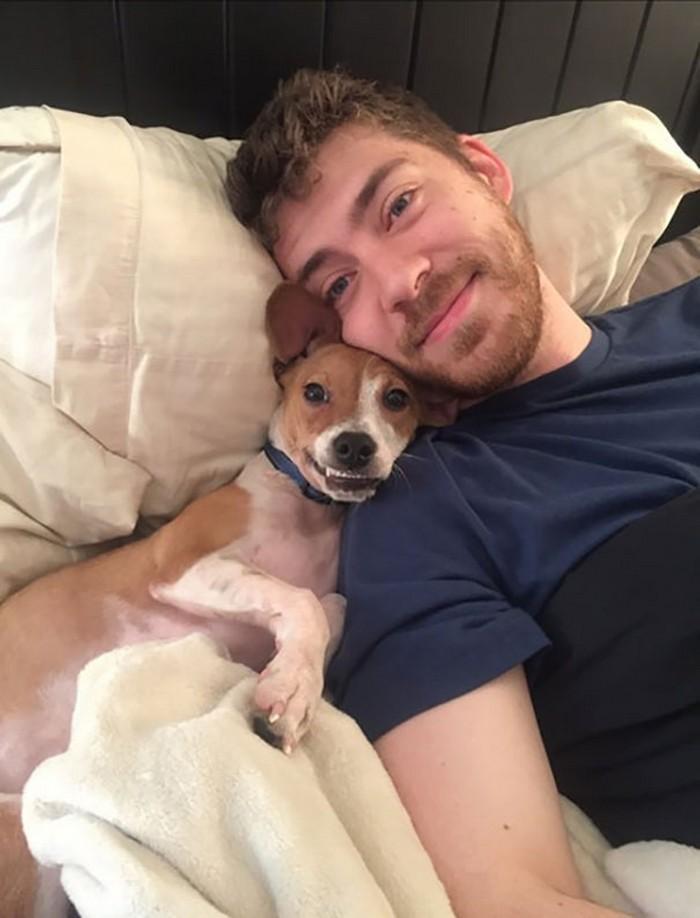 Pets caras-de-pau (24)