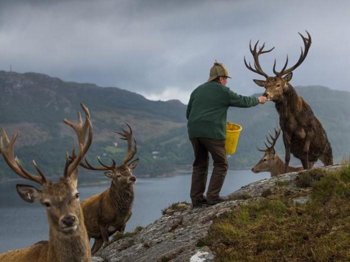 57 melhores fotos 2017 National Geographic (54)