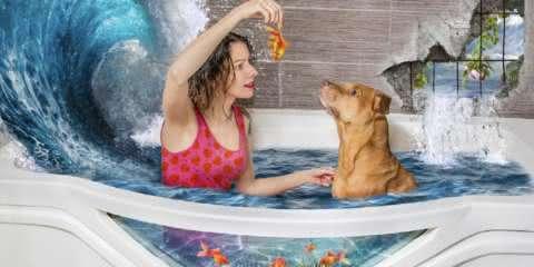 Fotógrafa cria mundo mágico para cães adotados e seus novos donos