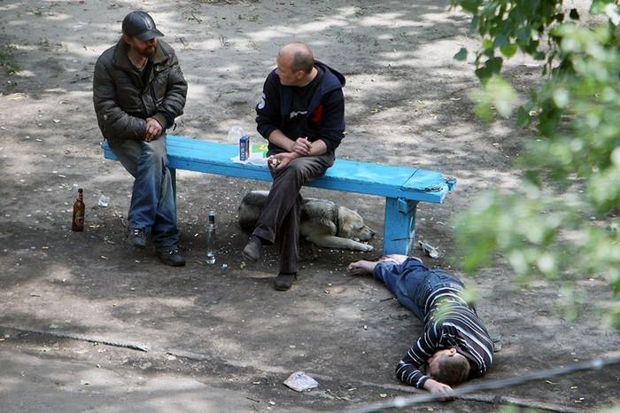fotógrafo registra o mesmo banco de parque há dez anos (11)