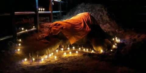 Elefante de 60 anos falece e recebe linda homenagem pelo seu trabalho