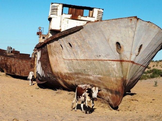 Fotos incríveis de cemitério de navios abandonados no Uzbequistão (3)