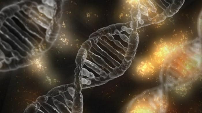A ciência e a busca pela imortalidade (2)