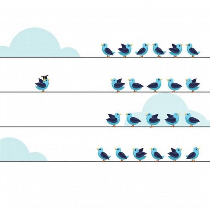 tomar decisões mais conscientes para aproveitar melhor o tempo (2)