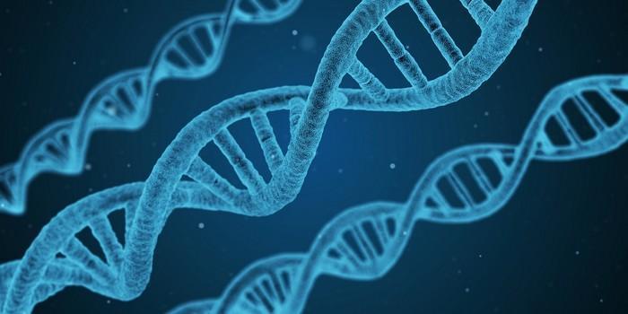 Genética dos introvertidos