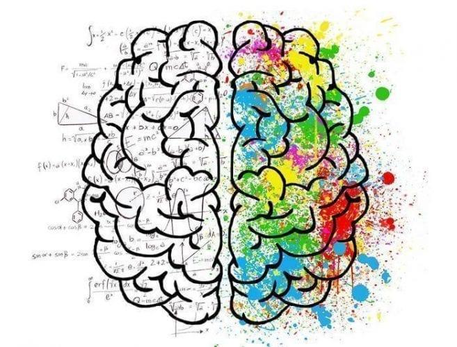 O maior mito sobre nossos cérebros é que eles são masculinos ou femininos