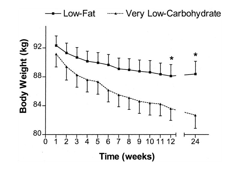 como emagrecer rapido dieta low carb